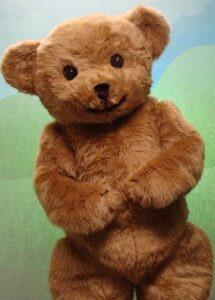 Professional photoshoot teddy bear suit