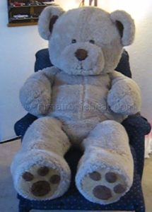 Professional photoshoot teddy bear costume