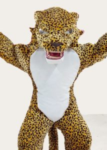 Professional Leopard Suit Costume