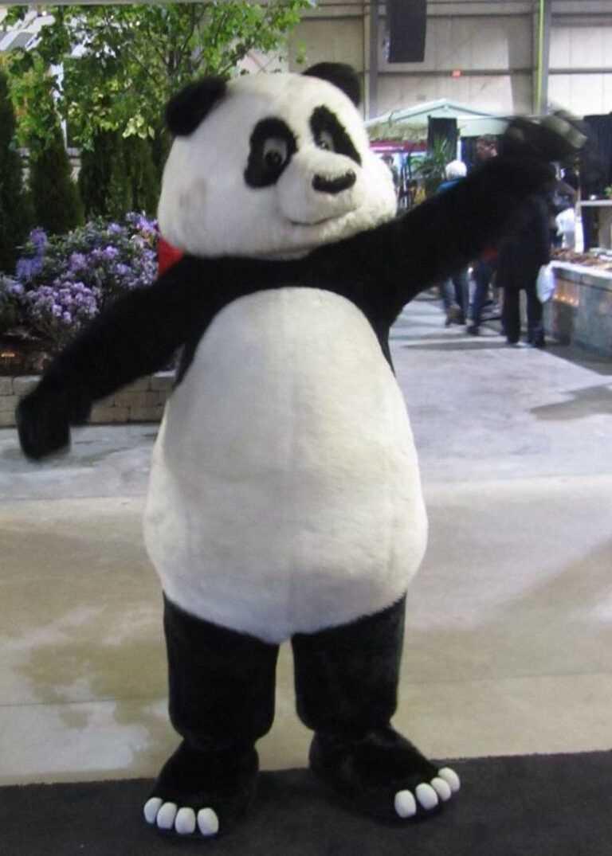 unique panda suit