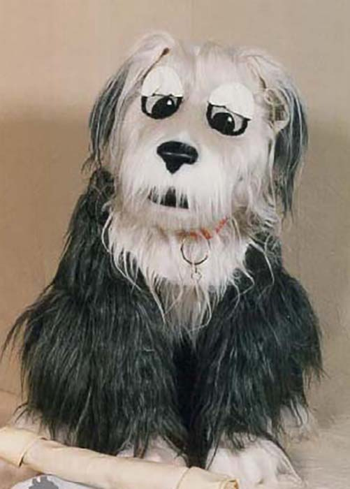 quad sheepdog costume