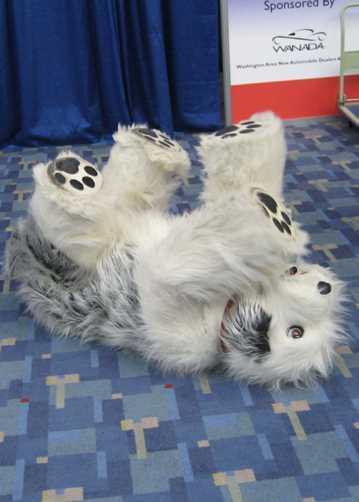 sheepdog puppet costume