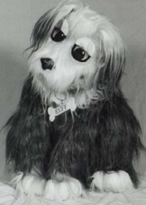quad sheepdog suit
