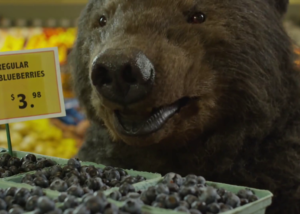 Realistic brown bear costume filming