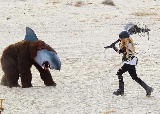 bear shark costume
